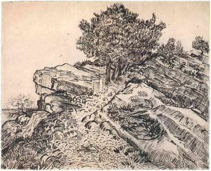 Vincent-Van-Gogh-Tree drawings-5