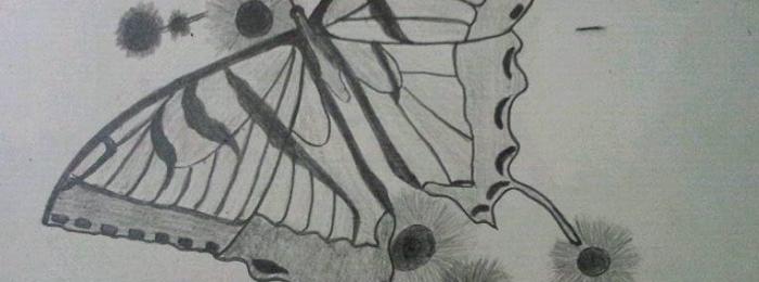 Drawing by Nirmin J