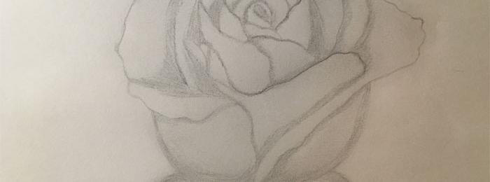 Drawing by Amanda
