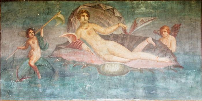 venus anadyomenes
