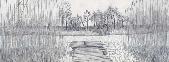Drawing by Lam Doan