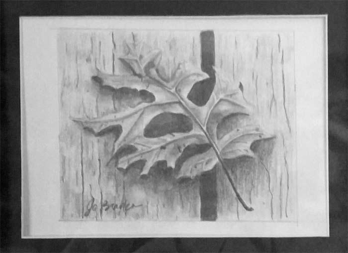 Drawing by Nancy Jo Braden