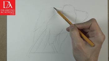 Drawing a Bird