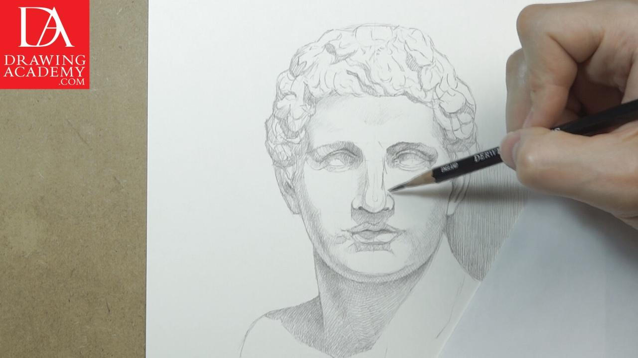 Drawing a portrait video lesson