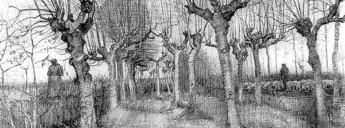 Vincent Van Gogh – Tree drawings