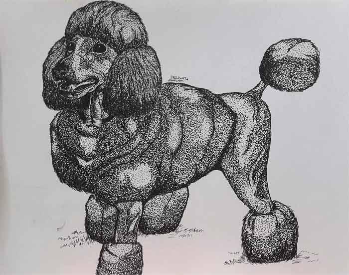 Poodle-on-Pen