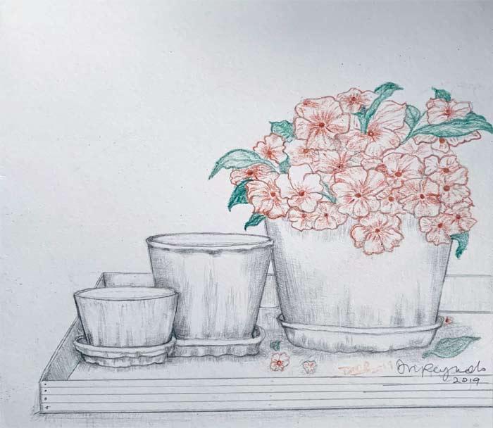 Crooked pots
