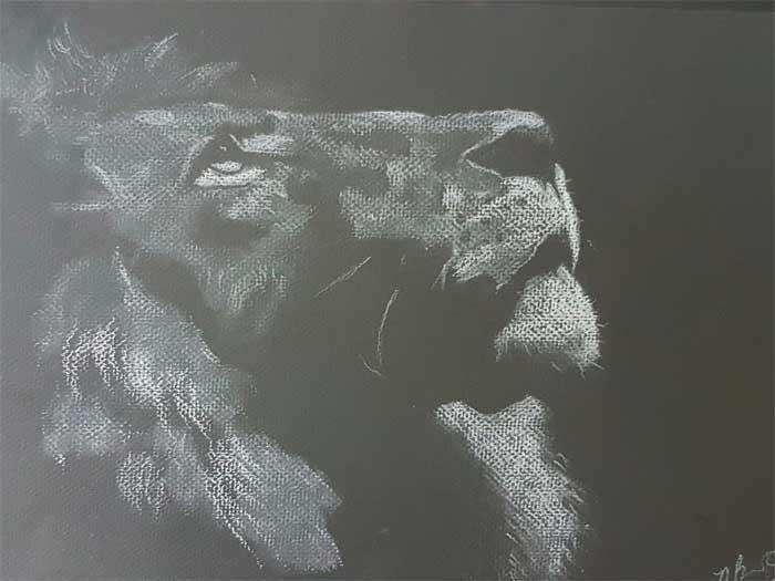 Nathaniel Barton Art